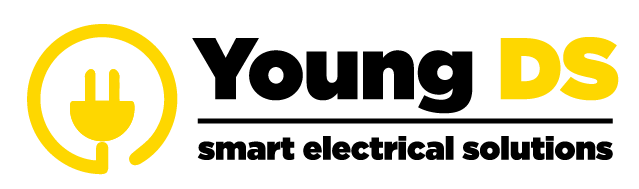 YOUNG DS ELECTRIC